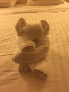 Folded Towel animal bear